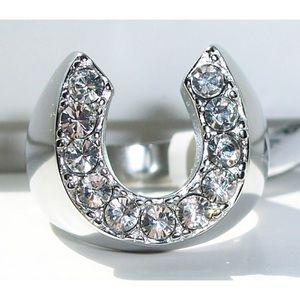 STAINLESS STEEL Men's Horseshoe Crystal Ring